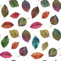 Elegant leaves for design. Colorful autumn leaves. Seamless watercolor pattern of leaves.
