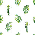 Seamless watercolor illustration of tropical leaves, dense jungle.