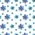 Seamless Watercolor pattern with blue forget-me-nots flowers on a white background
