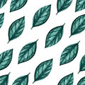 Seamless Watercolor Pattern. Green Leaves On White Background