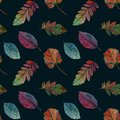 Elegant autumn leaves for different color design. Seamless watercolor pattern of colorful leaves.