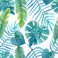 stock image of  Seamless watercolor pattern of tropical leaves