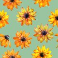 Seamless watercolor texture of Rudbeckia flowers. Watercolor illustration. Flowers for design.