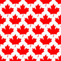 Seamless wrapping paper - red maple leafs Royalty Free Stock Photo