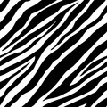 Seamless zebra pattern Royalty Free Stock Photo