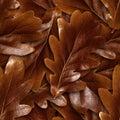 Seamlessly brown oak leafs background.