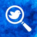 Search icon with flat white bird on a blue triangular polygonal Royalty Free Stock Photo