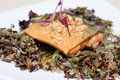 Seared Arctic char Royalty Free Stock Photos