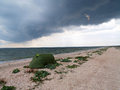 Seascape with green tent and seagull on shelly wild beach under dark blue sky before heavy thunderstorm Stock Photos