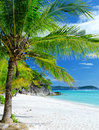 Seascape green tree on a white sand beach malcapuya island coron philippines Stock Photography