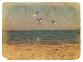 Seascape with seagulls. Old postcard Royalty Free Stock Photos