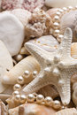 Seashell background with pearls Stock Image