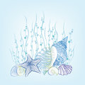SeaShell background Summer Holiday Concept. Underwater Background Royalty Free Stock Photo