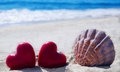 Seashell with hearts  by the ocean Royalty Free Stock Photo