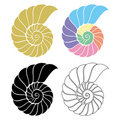 Seashell Nautilus Royalty Free Stock Photos