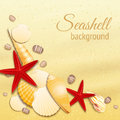 Seashell sand background poster on the golden summer beach vector illustration Stock Photo