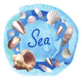 Seashells on blue watercolor background
