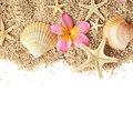 Seashells border sand and frame isolated on white background summer Royalty Free Stock Photo