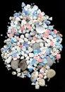 Seashells con los granos en fondo negro Fotos de archivo libres de regalías