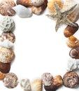 Seashells frame Royalty Free Stock Photo