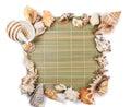 Seashells frame of seashells on a white background Royalty Free Stock Photo