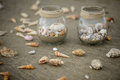 Seashells in jars various on a beach Royalty Free Stock Images