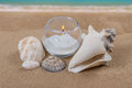 Seashells and a lit candle on a sandy beach Stock Images