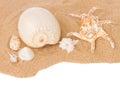 Seashells on sand border Royalty Free Stock Photo