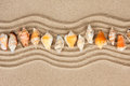 Seashells on the sand can be used as background Stock Images