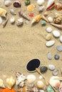 Seashells, sand and starfish Royalty Free Stock Photo