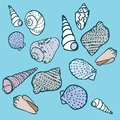 Seashells set vector this is file of eps format Royalty Free Stock Images