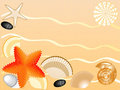Seashells, stones, seastars on sand background Royalty Free Stock Photo
