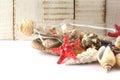 Seashells on white background Royalty Free Stock Photo