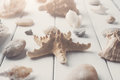 Seashells on white wood, sea vacation background Royalty Free Stock Photo