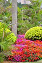 The seaside gardens in zhuhai Stock Photos