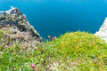 Seaside nature spring on top of a cliff at the isle od skye scotland uk Royalty Free Stock Images