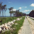 Seaside path a with small figure of a woman cyclist Royalty Free Stock Photo