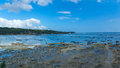 Seaside Plantation shellfish Royalty Free Stock Photo