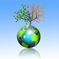 Season of planet tree separated with fresh and dry leafs on a earth s globe Royalty Free Stock Image