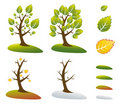 Season tree symbols vector illustration Royalty Free Stock Photo