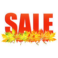 Seasonal autumn sale announcement of of the on a background of yellow maple leaves Stock Photography