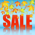 Seasonal autumn sale announcement of of the on a background of yellow maple leaves Royalty Free Stock Images