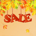 Seasonal autumn sale word and maple leaves Royalty Free Stock Photo
