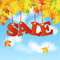 Seasonal autumn sale word maple leaves against the blue sky with white clouds Stock Photo