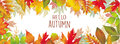 Seasonal banner of autumnal leaves