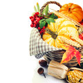 Seasonal basket with pumpkins and corn autumn still life Stock Photos