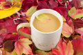 Seasonal fall coffee horizontal photo of fresh small maple leaf inside and cream with autumn leaves surrounding mug Royalty Free Stock Photo