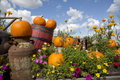 Seasonal garden decorations rustic autumn decoration with pumpkins Royalty Free Stock Photo
