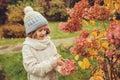 Seasonal garden work in late autumn, child girl helps to cut hydrangea bush with pruner Royalty Free Stock Photo