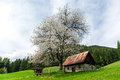 Seasonal house on the hills, Slovenia Stock Photos